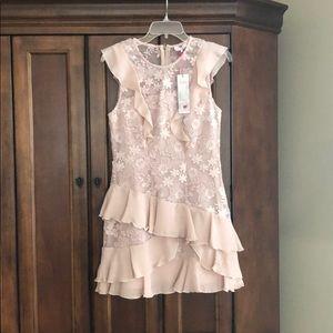 Parker pearl blush ruffle dress